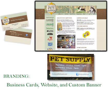 Branding: Coordinated Business Cards, Website, and Banner